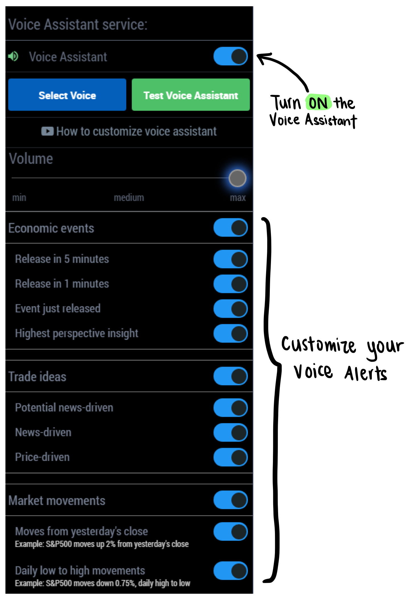 Fig. 3: Customization Screen for Voice Assistant